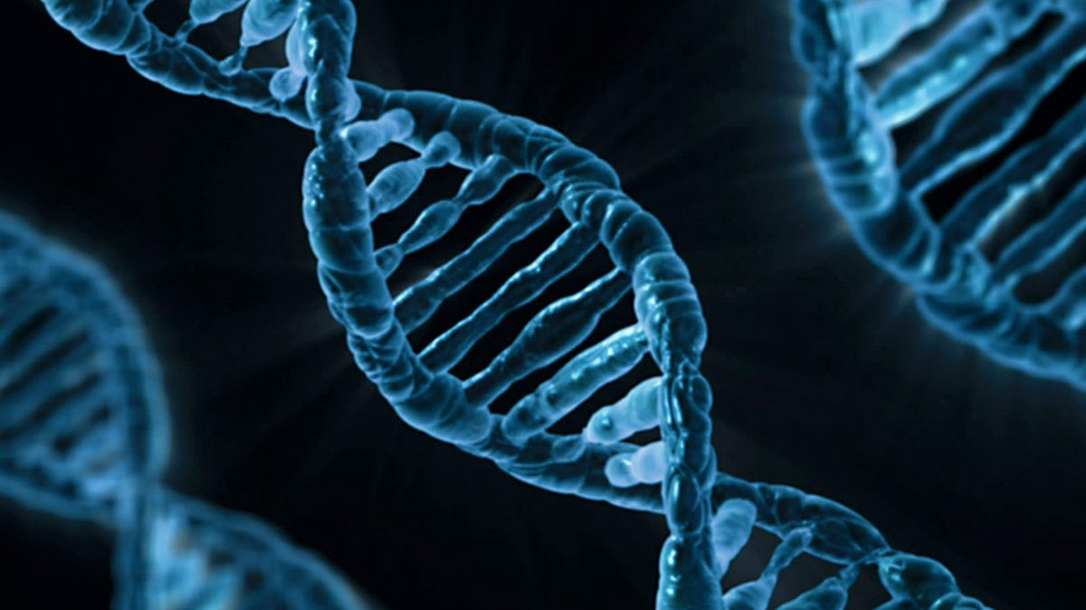 Las herramientas de edición genética CRISPR