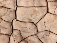desertificació sequera
