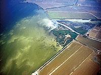 Lengua de contaminación