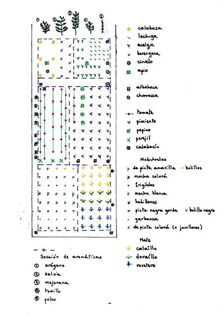 Biodiversidad agrícola