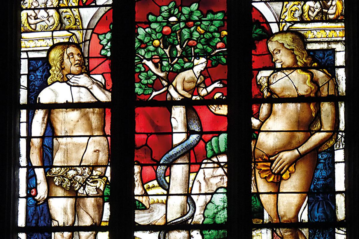 vitrall catedral arbre