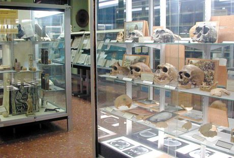 Museo Historicomédico UV
