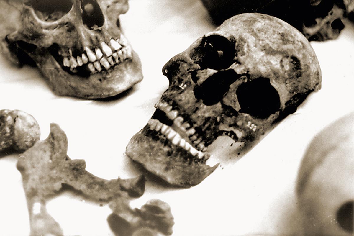 La revolución de la biología molecular llega a la genética forense ...