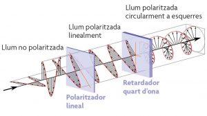 Polarització de la llum