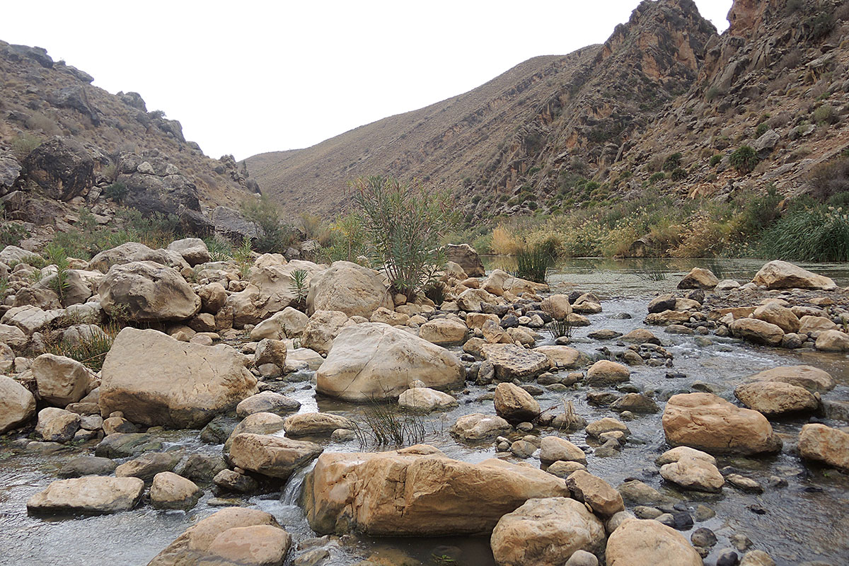río Muluya