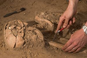 adn restos humanos