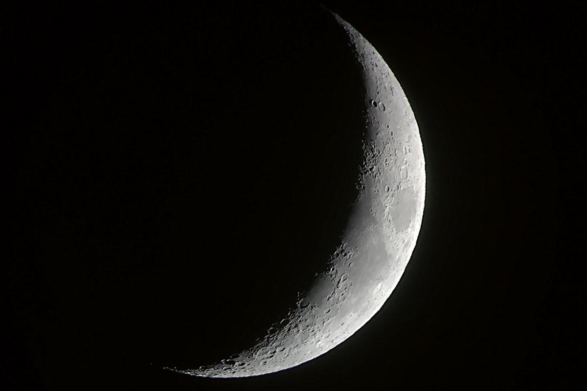 salvemos la luna