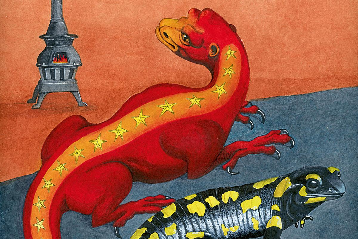 salamandra ilustración grande