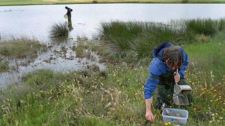 mostreig llacuna hoya rasa sobrevivir incertidumbre ambiental