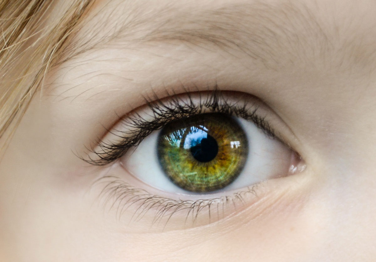 color iris ojos