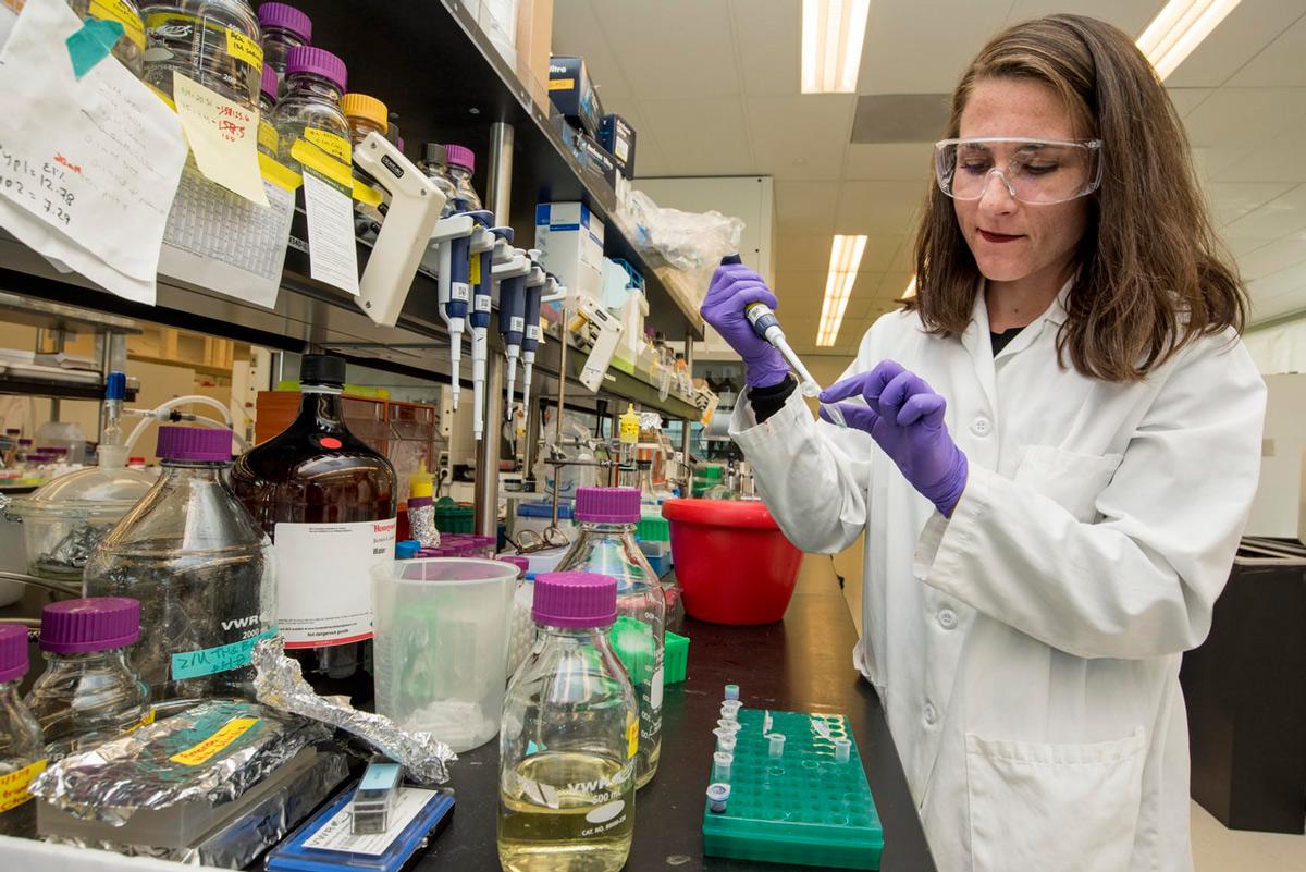Dia Mundial de la Xiqueta i la Dona en la ciència