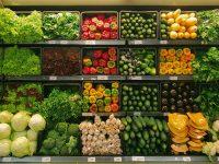 mejora genética plantas