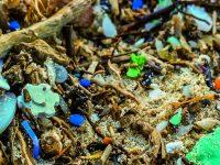 Microplásticos - Artículo