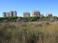 Dehesa del Saler urbanización