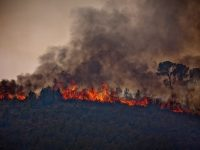 Incendio en Andilla (La Serranía)